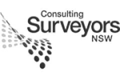 Realserve Pty Ltd Industry Accreditation Consulting Surveyors NSW