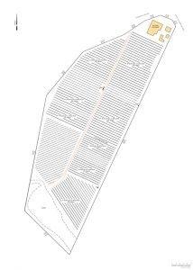 Realserve Set-Out Plan example for a lemon plantation on a commercial property